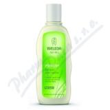 WELEDA Pšeničný šampon proti lupům 190g