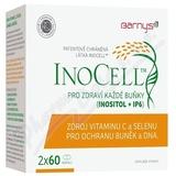InoCell dvojbalení cps. 2x60