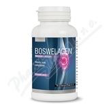 Boswelagen cps.60