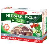 TEREZIA Hlíva ústřičná s lactobacily+vit.C cps.60